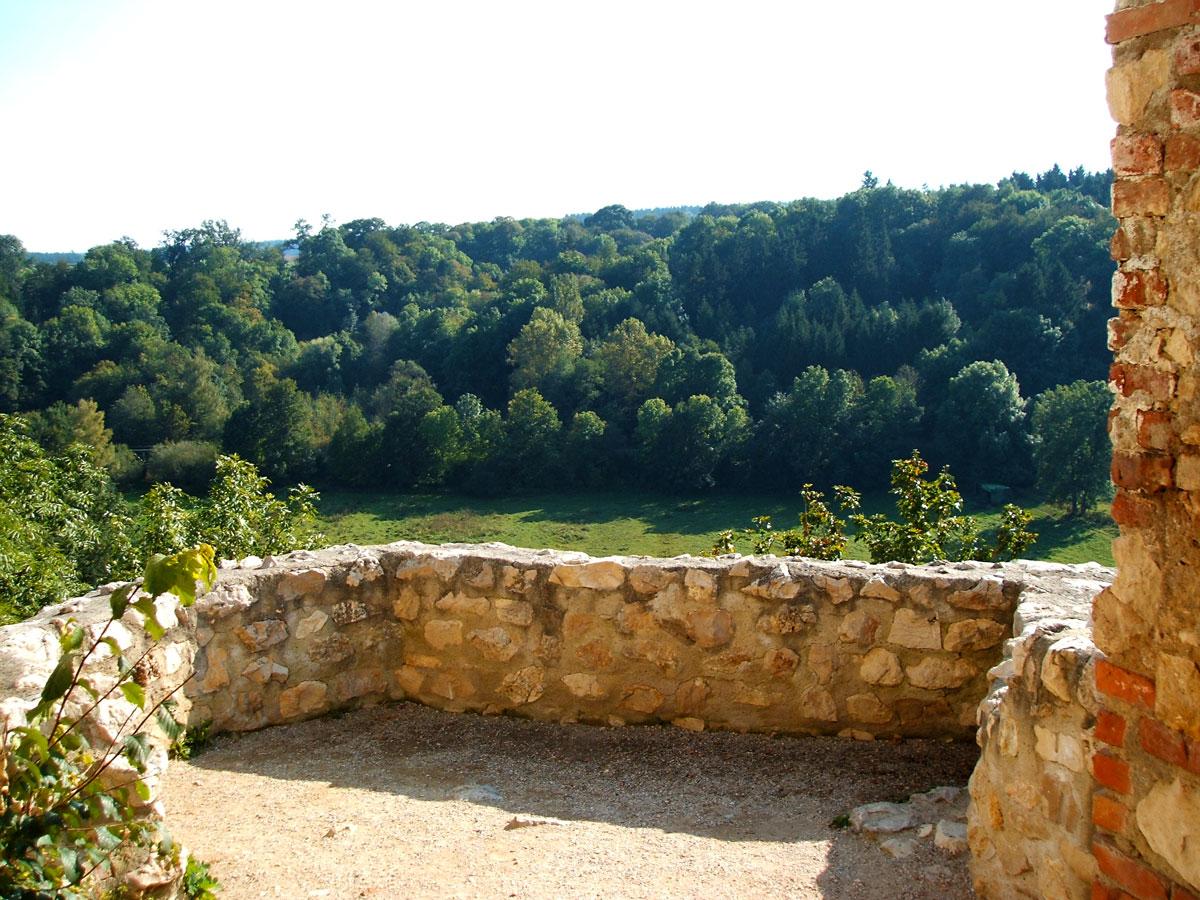Aussicht Ruine Hornstein