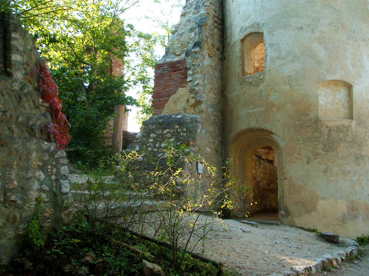 Ruine Hornstein Innenbereich