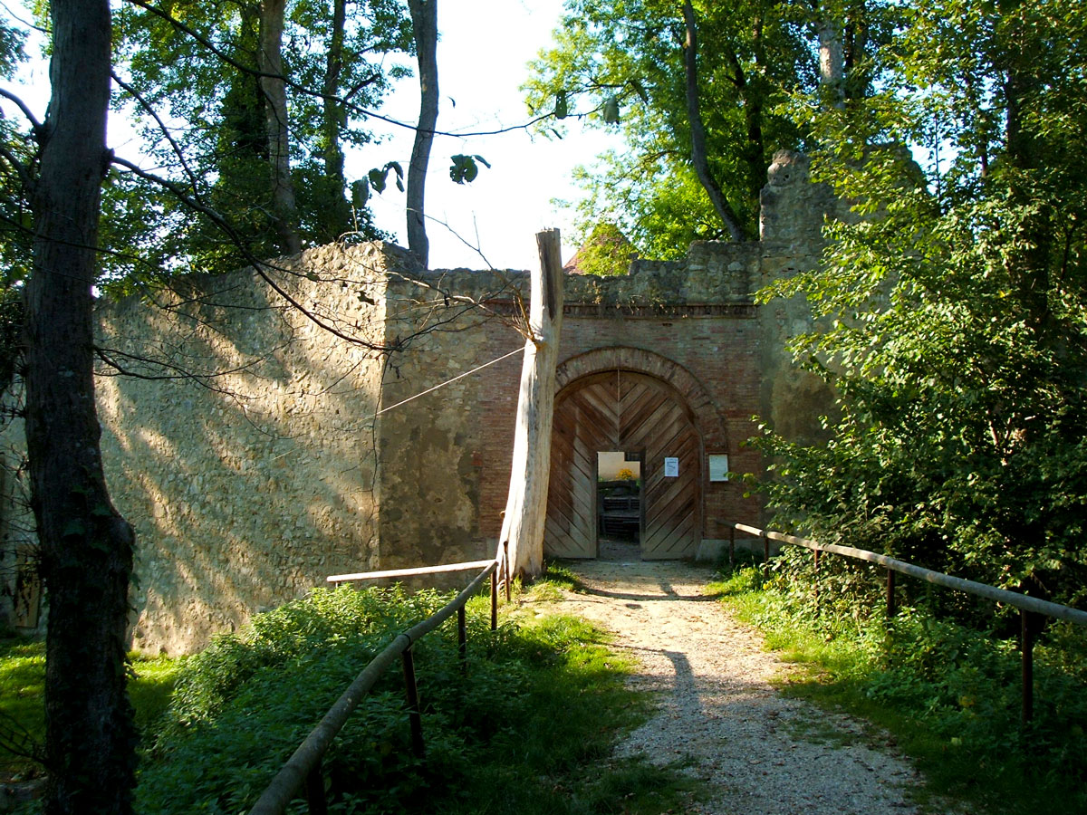 Tor Ruine Hornstein